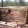 Flete de madera durango a canalejas edo de mex