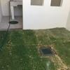 Trabajos de levantamiento de barda y firme a piso de jardin incluye reboco y aplicacion de vitropiso