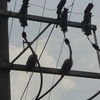 Otros trabajos electricistas