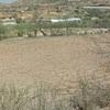 Olla de captacion de agua pluvial para cultivo de aguacate