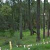 Colocar paneles en cabaña zona rural