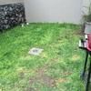 Colocar adocreto y agregar pergolado en espacio que actualmente es jardín  (rectángulo de 4m x 15m)