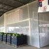 Proyecto muebles reciclados