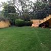 Mantenimiento de jardín y poda de arboles