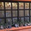 Cotizacion ventanas