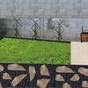 Remodelar mini jardin