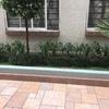 Proveedor para mantenimiento de jardinería en condominio