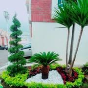Diseño y Construcción de Jardines Imagen Urbana