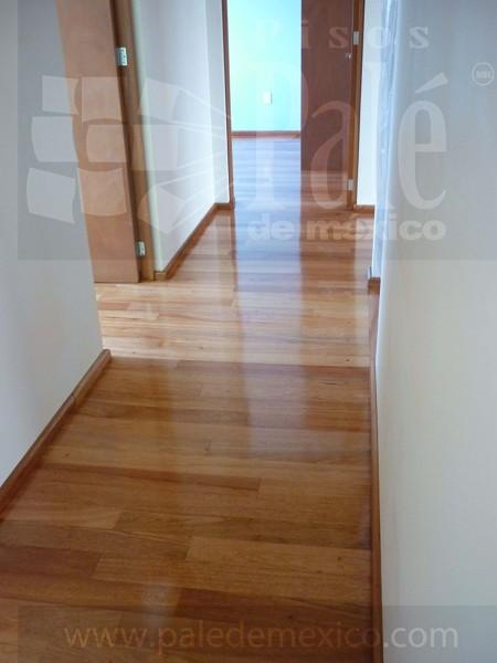 Cuidados de un piso de madera habitissimo for Piso laminado precio